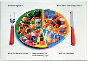 Balanced.Food.Plate.jpg